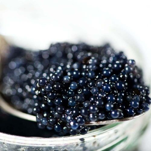Sibirskaya Caviar, frisch, 125 g
