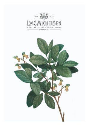 Leatherwood-Honig